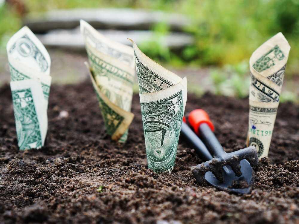 sustentabilidad, financiamiento